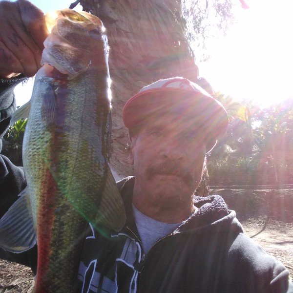 Largemouth bass caught by blaine porlas