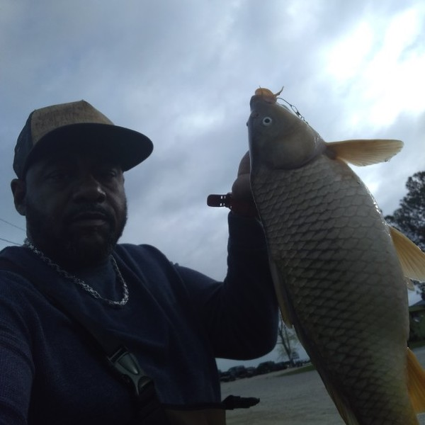8 lbs Common carp caught by Eric Fleming