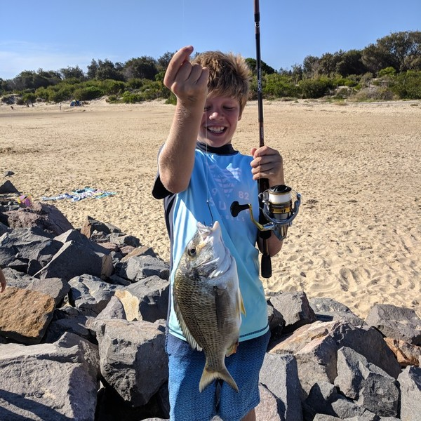 9.37 lbs / 15 in Surf bream caught by Joseph Martin