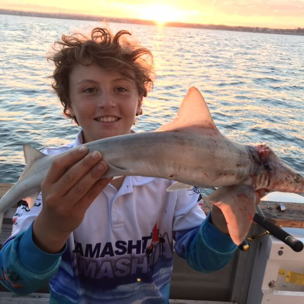 6.63 lbs / 39 in Gummy shark caught by Hudson  Maddalena