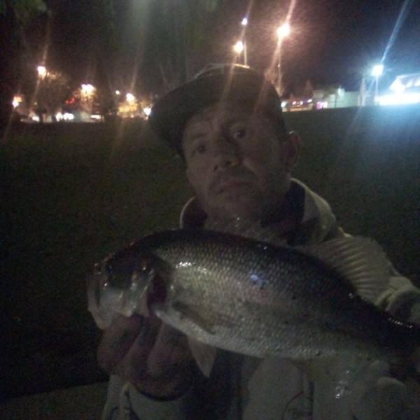 3.38 lbs / 18 in Largemouth bass caught by Chad Ruble