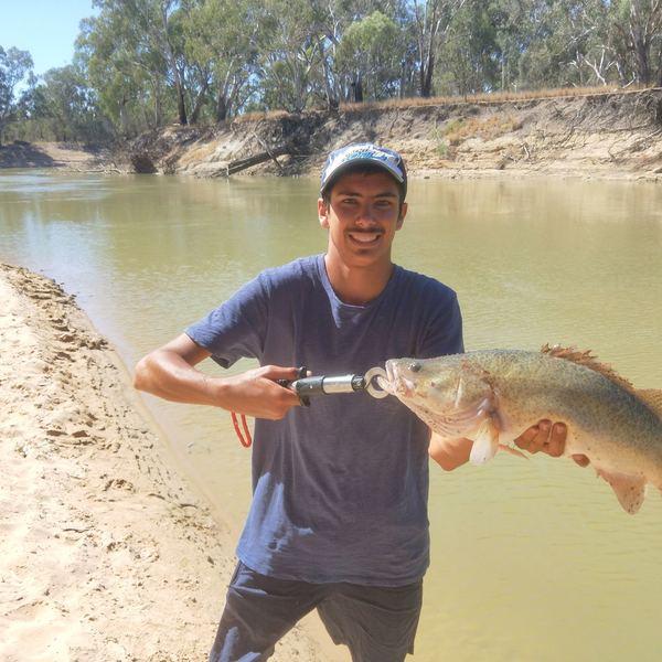 23 in Murray cod caught by Jayden Harmon