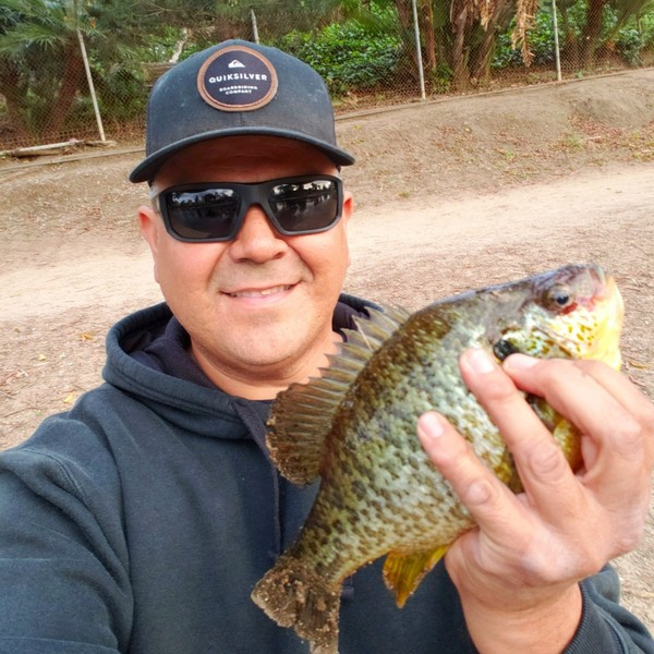 0.44 lbs Redear sunfish caught by Eddie Jara