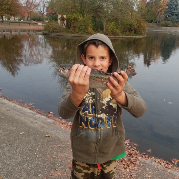 1.31 lbs / 15 in Rainbow trout caught by Rylan Adrianse