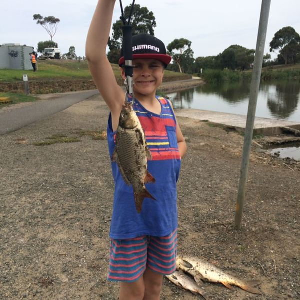 2.2 lbs / 13 in Common carp caught by Jordan Azzopardi