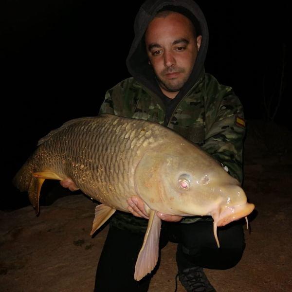 Common carp caught by Aitor Perez
