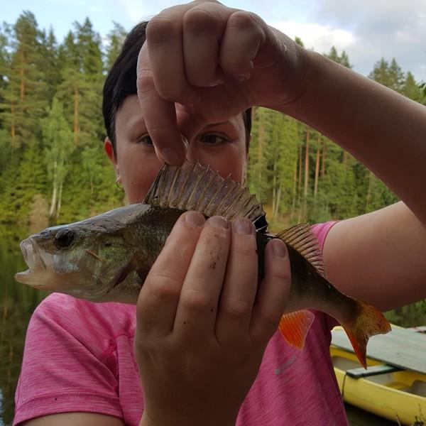European perch caught by Jane A