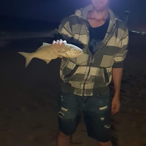 Bluefish caught by Jai Sleep