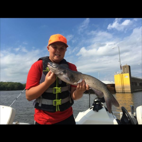 4.75 lbs / 25 in Channel catfish caught by Outdoors Man