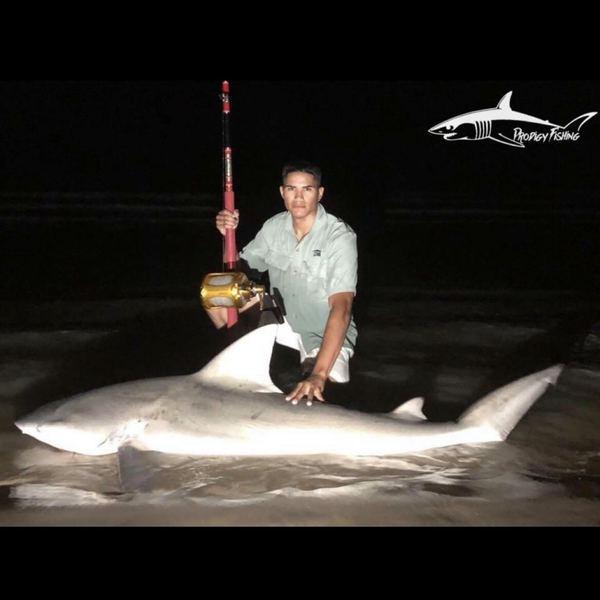 Bull shark caught by ProdigyFishing Tx