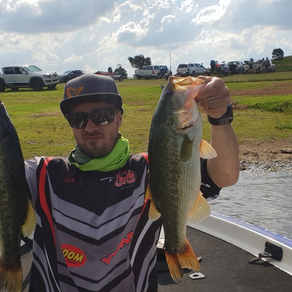 3.31 lbs Largemouth bass caught by nuno oviedo