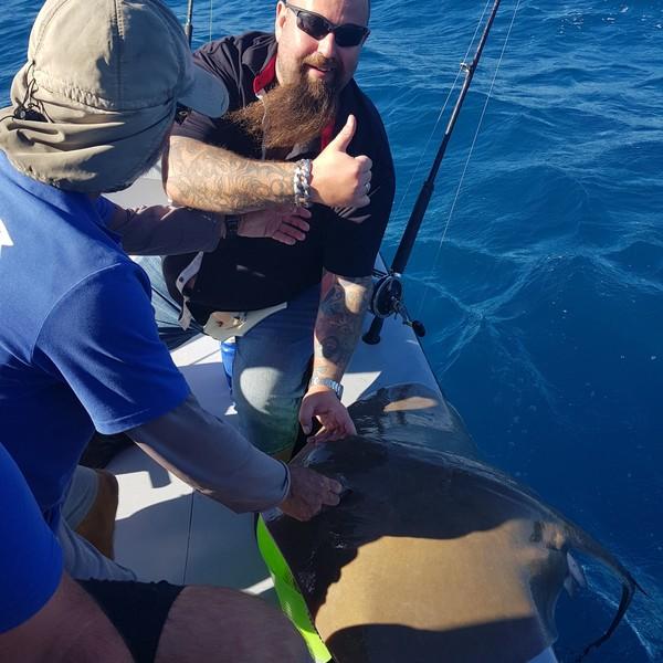 88.18 lbs Common stingray caught by Jonte Segerhjelm