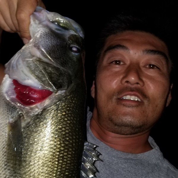Largemouth bass caught by Mike Lee
