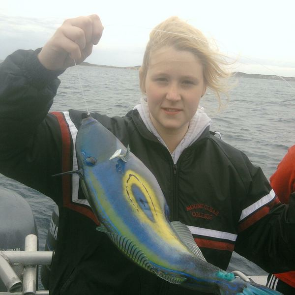 Six-spined leatherjacket caught by Grace Anstis