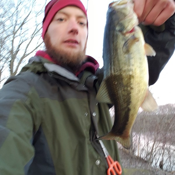 Largemouth bass caught by Casey Fiedler