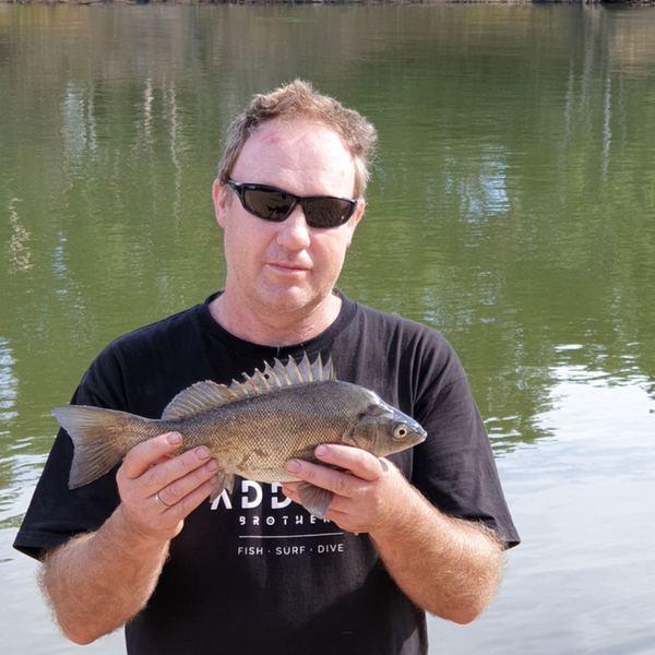 16 in Bidyan perch caught by Derek McLaughlin