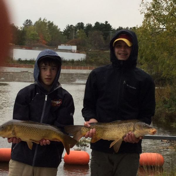 Common carp caught by Sam Bruder