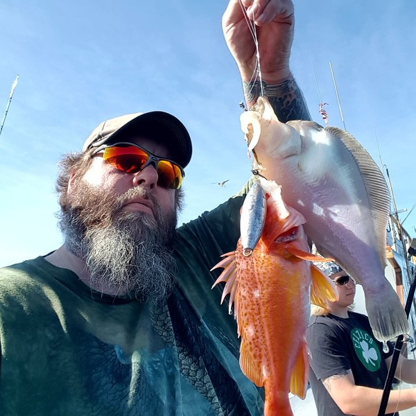 1 lbs / 12 in Shorthorn sculpin caught by Ryan Mcdermott
